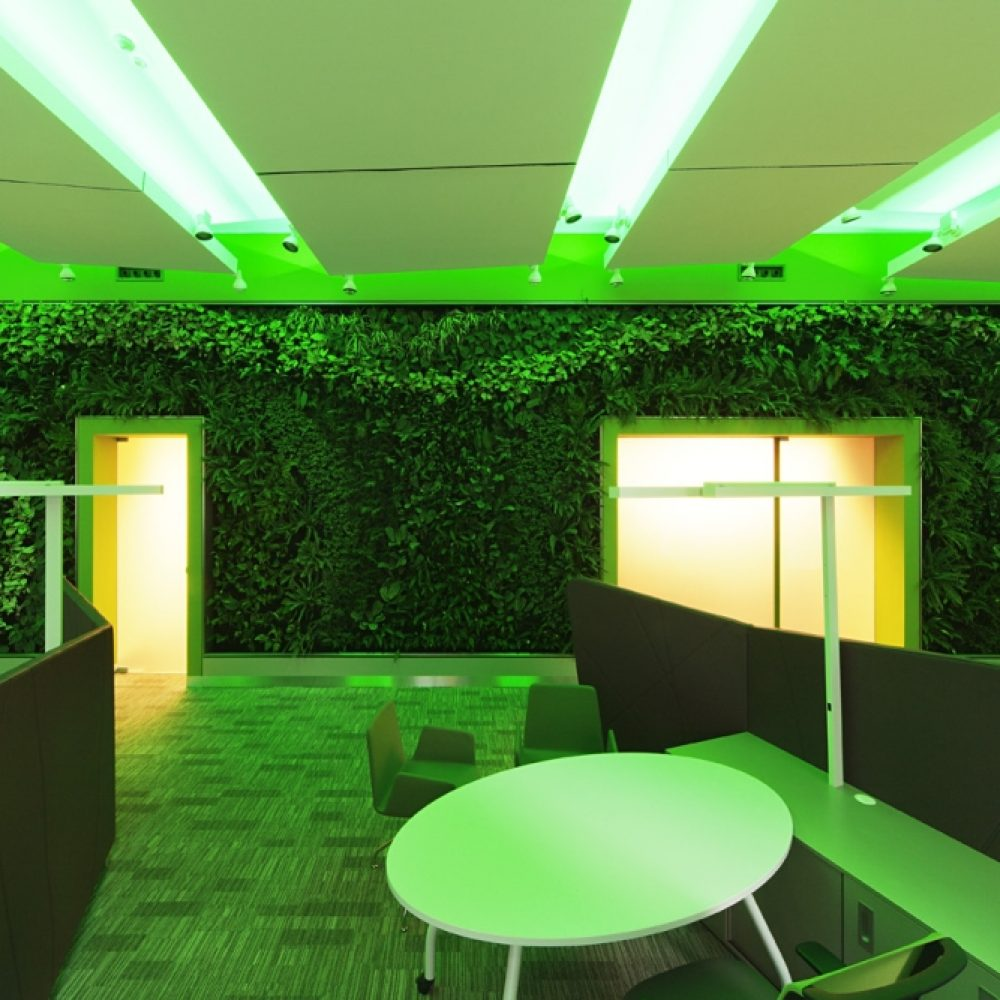 OTP A6 green wall (2)
